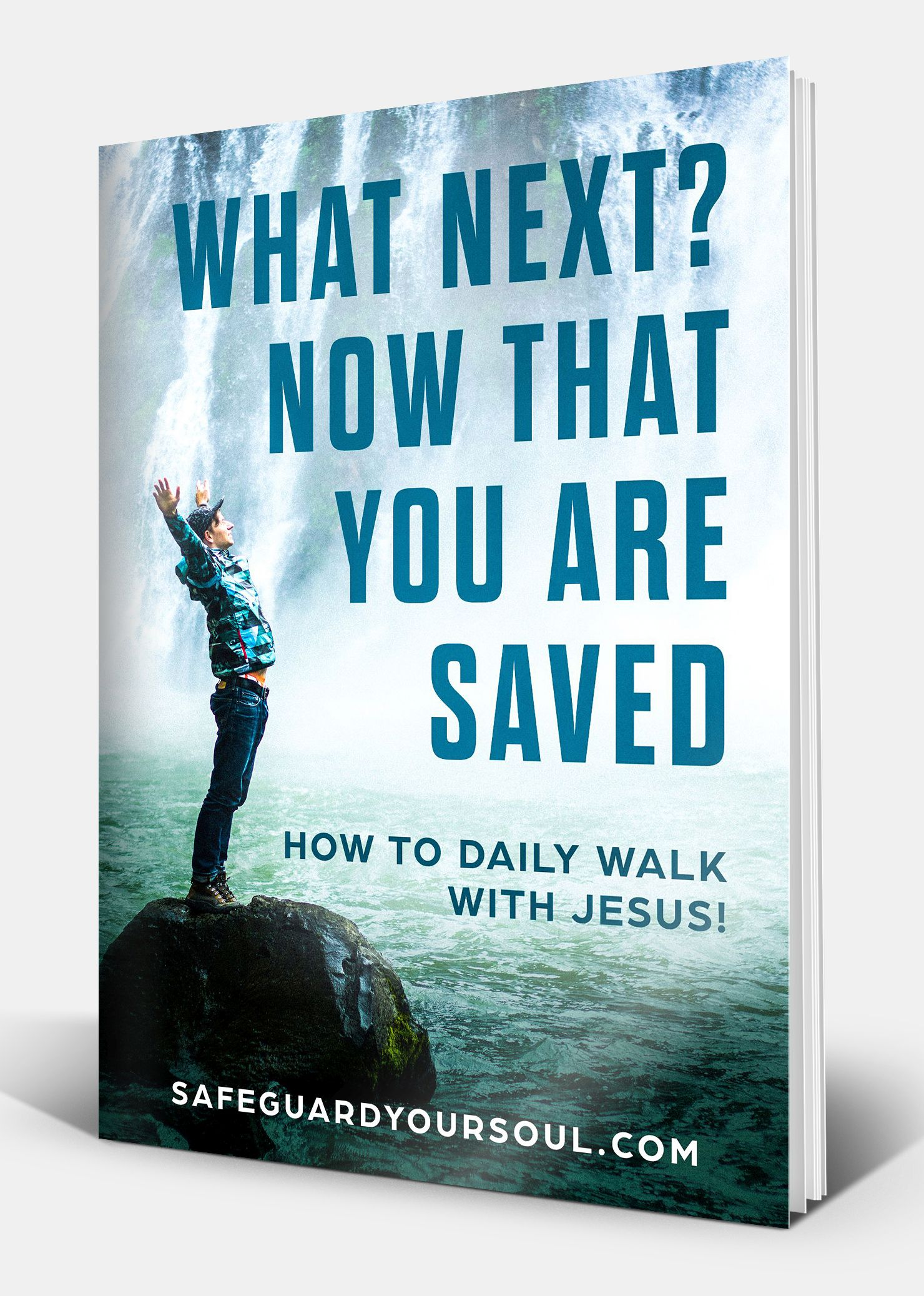 WHAT NEXT Now That You Are Saved Book Todd Tomasella